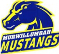 Image 1 for Mustang News
